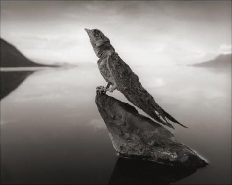 Lake-Natron5-550x440